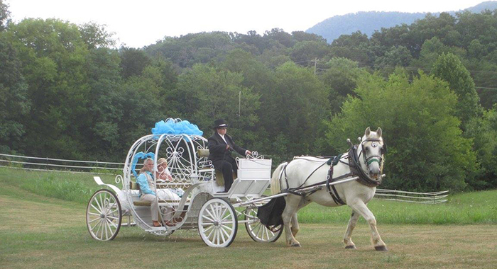 Gold Rush Stables & Heritage Carriage Rides